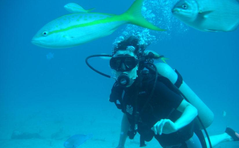 Tout savoir sur la plongée aux Bahamas